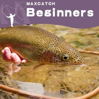 PERFECT FOR BEGINNERS  (3)