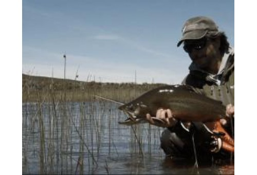 How to Choose Classic Fly Fishing Gear?