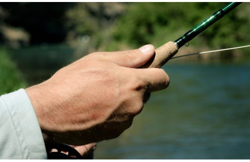 Reeling in Fly Fishing with Fly Rod