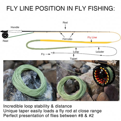 Salmon/Steelhead Fly Line With 2 Welded Loops WF8F Double Color Floating Fly Line for Saltwater/Freshwater