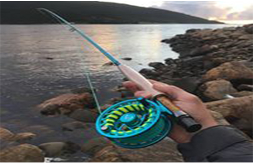 Stripy Fly Fishing Ultimate Guide