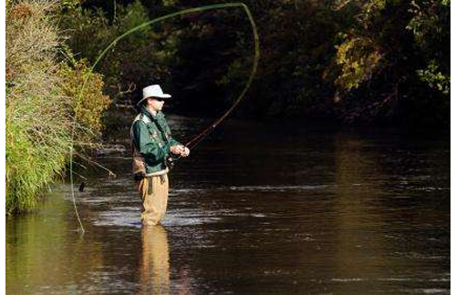 Tips for Achieving A Perfect Back Cast Fly FIshing