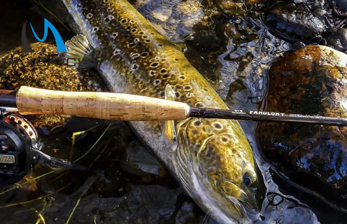 How to Choose Best Polarized Fly Fishing Sunglasses?