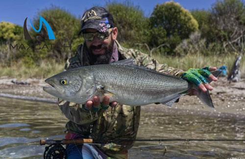 Ultimate Guide To Cheap Fly Fishing Tackles