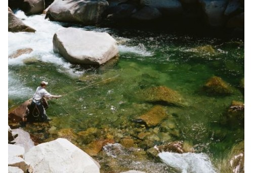 What Is the Best Crystal River Fly Fishing Vest?