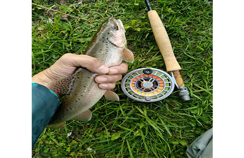 Best fishing equipment and services of fly fishing shops wyoming