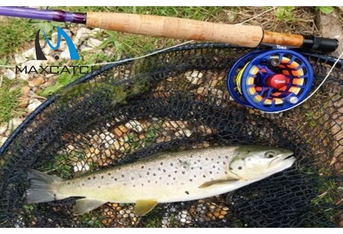 What did you buy at fly fishing specialties shop?
