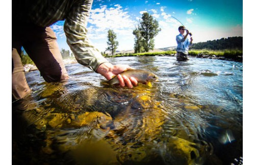Your Good Choice: Gore Creek Fly Fishing