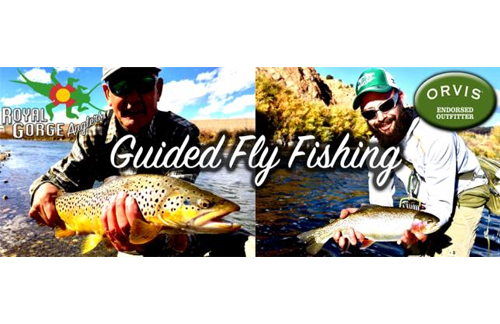 Highly professional orvis fly fishing podcast