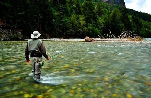 The best provo river fly fishing