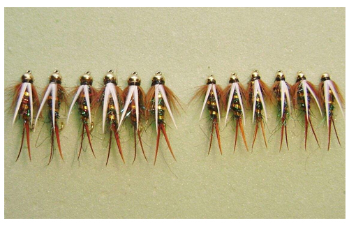 An Explanation On What Are Nymphs Fly Fishing